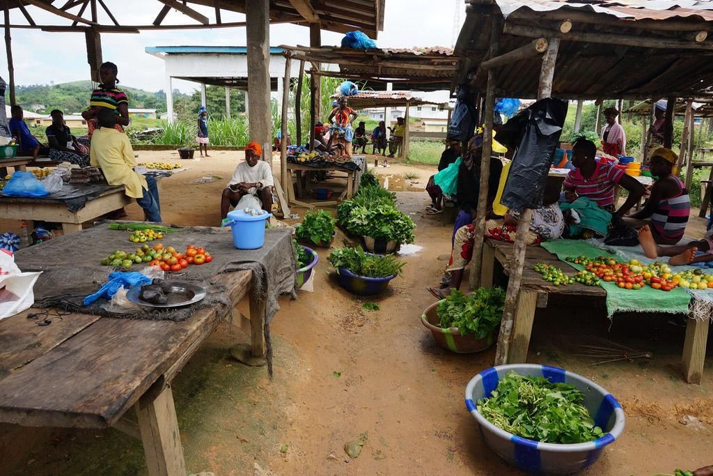 Farming In Liberia