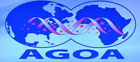 AGOA - US/African Business Partnership
